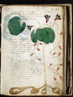 Voynich Manuscript, The Most Mysterious Manuscript in the World