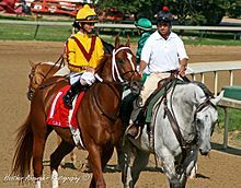Curlin - Wikipedia, the free encyclopedia
