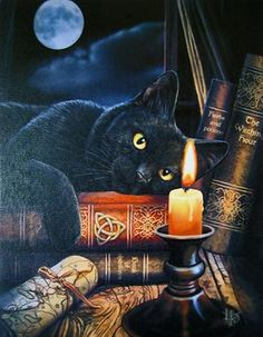 Black Cat Wall Plaque Art Print by Lisa Parker Master's Voice Ouija board Kitty Wall Plaque I Love Cats, Crazy Cats, Cute Cats, Chat Halloween, Halloween Scene, Halloween 2019, Black Cat Art, Black Cats, Cat Wall