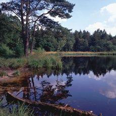 Wat is het hier stil! De kern van het #Sleenerzand bestaat uit stille #bossen die het domein zijn van tientallen #vogelsoorten. Het zuidelijke deel is een oud stuifzandgebied, met hier en daar grillig gevormde jeneverbessen. Op sommige plaatsen doemt opeens een #heideveldje of een onverwacht #vennetje tussen het zand op. Voor de routes kijk dan op http://www.staatsbosbeheer.nl/Natuurgebieden/Sleenerzand.aspx?tab=Activiteiten