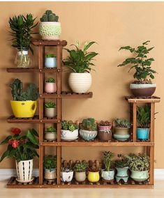 30 Best Patio Garden Design Ideas and Low Maintenance – Small Balcony Decor Ideas 53 The Best Cinder Block Garden Design Ideas In Your Frontyard 35 Classic Mexican Planters Ideas Perfect to your interior Very Beautiful Diy Wooden Pallets Shelf Fresh Ide