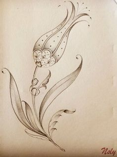 Cute Drawings, Drawing Sketches, Tulip Tattoo, Pyrography Patterns, Font Art, Islamic Patterns, Iranian Art, Turkish Art, Quilling Patterns