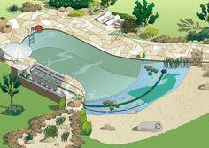AQUATECHS - Swim Ponds: