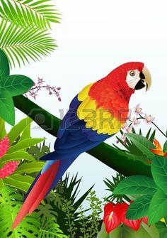 ilustración de aves Macaw en el bosque tropical