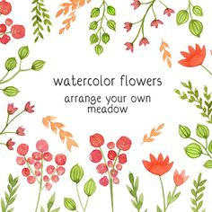 Digital Clip Art Watercolor Flowers Floral Clip by SwiejkoForPrint