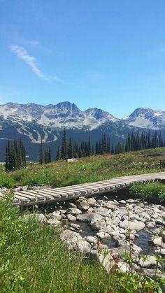 Local's Tip: Hiking in Whistler #exploreBC #Hike #Whistler #WhistlerHike