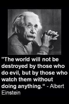 Quotes of Albert Einstein: Quotes by Einstein : Inspirational Quotes of Einstein. Famous Einstein Quotes and sayings. Citations D'albert Einstein, Citation Einstein, Albert Einstein Quotes, Great Quotes, Quotes To Live By, Me Quotes, Inspirational Quotes, Evil Quotes, Evil People Quotes
