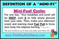 THM mini fuel cycle