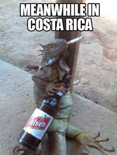 Meanwhile In Costa Rica (16 Pics)