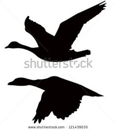 bird silhouette by ariman, via Shutterstock