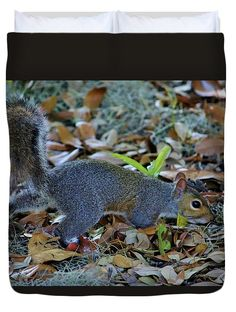 Wild Animal Duvet Cover featuring the photograph Searching For Food by Cynthia Guinn