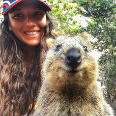 Had to do it my #quokkaselfie  It's so much fun hanging out with these #cute little guys on their home #rottnestisland.  Their permasmile makes them look forever #happy and makes everyone else also #smile. They are like a furry ostrich egg with a rats tail and t-Rex arms and the cutest little face  #Perth #perthlife #rottnest #rotto #westernaustralia #Australia #quokka #quokkalove #animalsofinstagram #animalselfie #travel #selfie #beachhairdontcare #truckerhat  by gazitn…