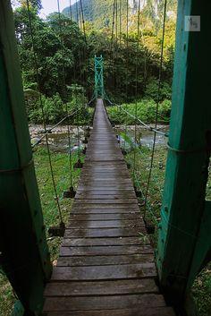 Suspension bridge, Camp 5, Gunung Mulu national park, Sarawak, Borneo, Malaysia