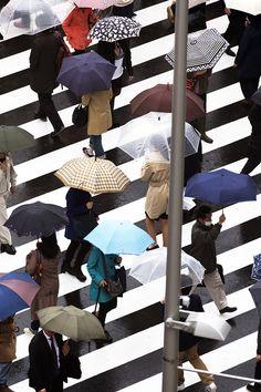Between the lines, Yoshinori Mizutani