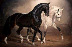 Jaime Corum Equine Art The Flirt oil on canvas 24 x 36 Pretty Horses, Horse Love, Beautiful Horses, Animals Beautiful, Cross Paintings, Animal Paintings, Pastel Paintings, Arte Equina, Horse Artwork