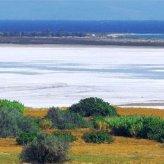 It's not the sea, but a salt lake! You have to see if for yourself in Limnos to believe it.