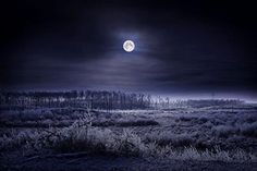 Advent is like the hush in a theater just before the curtain rises. It is like the hazy ring around the winter moon that means the coming of snow which will turn the night to silver. ~ Frederick Buechner