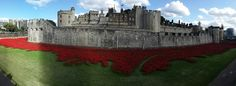 Tower of London - http://www.thisiscolossal.com/2014/07/tower-of-london-poppies/