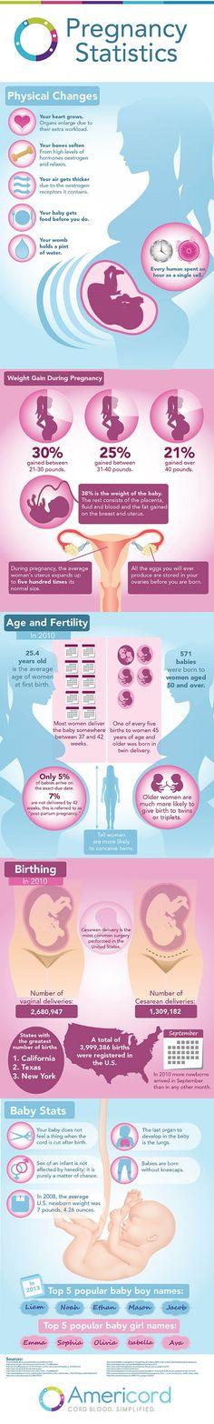 Pregnancy Statistics Infographic