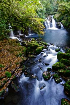 Kikuchi Gorge, Kumamoto, Japan 菊池渓谷 熊本