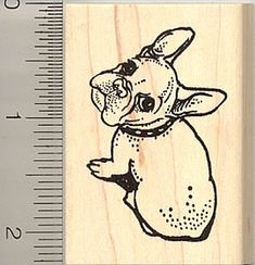 Amazon.com: Cute French Bulldog Rubber Stamp - Wood Mounted: Arts, Crafts  Sewing