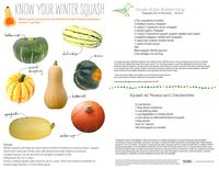Know Your Winter Squash — Food and Nutrition Squash Card, Squash Varieties, Knowing You, Nutrition, Wellness, Community, Fruit, Vegetables, Winter