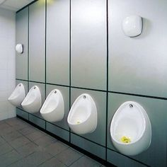 Photo of Dukt urinal ducts
