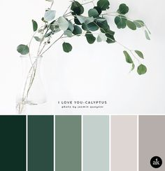 a eucalyptus-inspired color palette // green, gray, natural tones ideas bedroom romantic a eucalyptus-inspired color palette — Creative brands for creative people // Akula Kreative Bedroom Colour Palette, Nature Color Palette, Green Colour Palette, Green Colors, Blue Green, Gray Color, Bathroom Color Schemes, Bathroom Color Palettes, Kitchen Color Schemes
