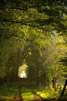 Germanyby Karsten Hansen -- #photography #nature