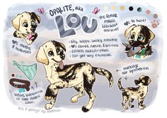 lou ref by burtzbees Cute Animal Drawings, Animal Sketches, Kawaii Drawings, Cute Drawings, Dog Drawings, Anime Animals, Cute Animals, Chibi, Mythical Creatures Art
