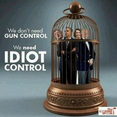 We need idiot control........HOW TRUE......TAKE AWAY OUR GUNS AND ONLY CRIMINALS WILL HAVE THEM....GET IT?!!!!.....REMEMBER THIS AT VOTING TIME PEOPLE.