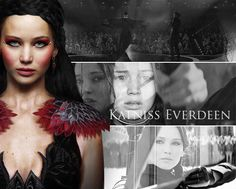 The Hunger Game Series: Victors