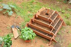 pirámide para plantar-