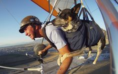 Hang glider takes best friend on paw-sitively thrilling ride (Photo: Jim Urquhart / Reuters)
