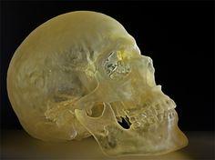 Artist 3D prints his own skeleton -