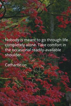 Nobody is meant to go through life completely alone. Take comfort in the occasional readily-available shoulder.  Cathartic.co