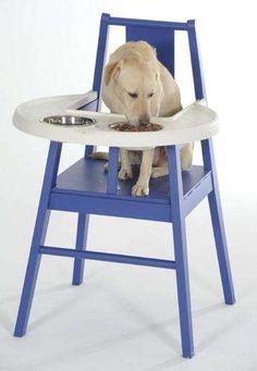Doggy Highchair