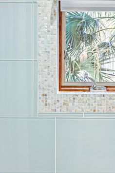 Love this for the bathroom - Miami Tropical Home Design Ideas, Pictures, Remodel and Decor