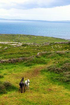 The Aran Islands – The Cradle of Irish Culture