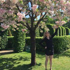 I miss sunny Holland @oci_neeves  #amsterdam #holiday #holland #keukenhofgardens by amandamcoakley