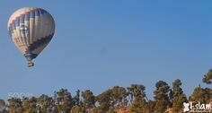 Hot Air Balloon Festival by eslammsarwe #architecture #building #architexture #city #buildings #skyscraper #urban #design #minimal #cities #town #street #art #arts #architecturelovers #abstract #photooftheday #amazing #picoftheday