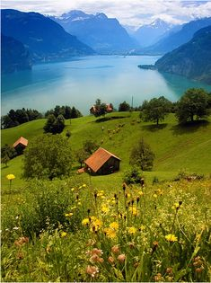 The beautiful lake Luzerne in Switzerland.
