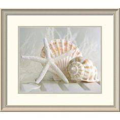 "Global Gallery 'Cali Starfish I' by Gaetano Framed Photographic Print Size: 24"" H x 28"" W x 1.5"" D"