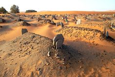 Marocco cementery in the middle of the desert.