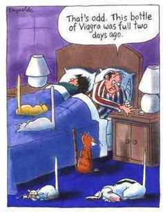 Funny Viagra Sex Cartoon  ... I know there is one dog there... but ... I had to pin it.... The devil made me do it.   hahahahaha