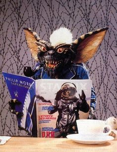 Remember Stripe, from the movie Gremlins? 80s Movies, Scary Movies, I Movie, Les Gremlins, Gremlins Gizmo, Kitsch, Comic, Drama, Arte Horror