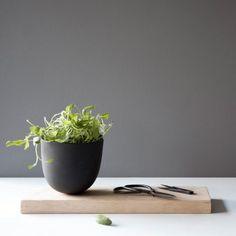 Terracotta-Pflanztopf für Kräuter mit Holzbrett als Unterlage #urbanjungle