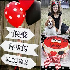 Yappy Birthday Pawty - Dog Birthday Party - Cavalier King Charles Spaniel