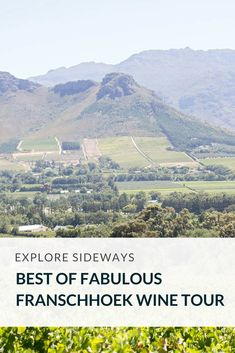 Discover fabulous Franschhoek and taste classic French Huguenot heritage wines Wine Tasting Experience, Wine Recipes, Wines, South Africa, Travel Destinations, Tours, French, Explore, Classic