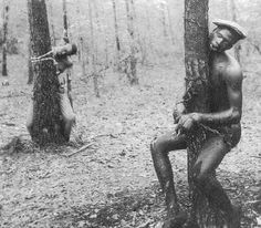 lynching in mississippi | ... lynched for analleged murder in Winona, Mississippi - April 1937